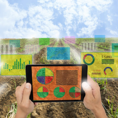 Internet of things(agriculture concept),smart farming,industrial agriculture.Farmer hold a tablet and use augmented reality technology to analysis all data in the field